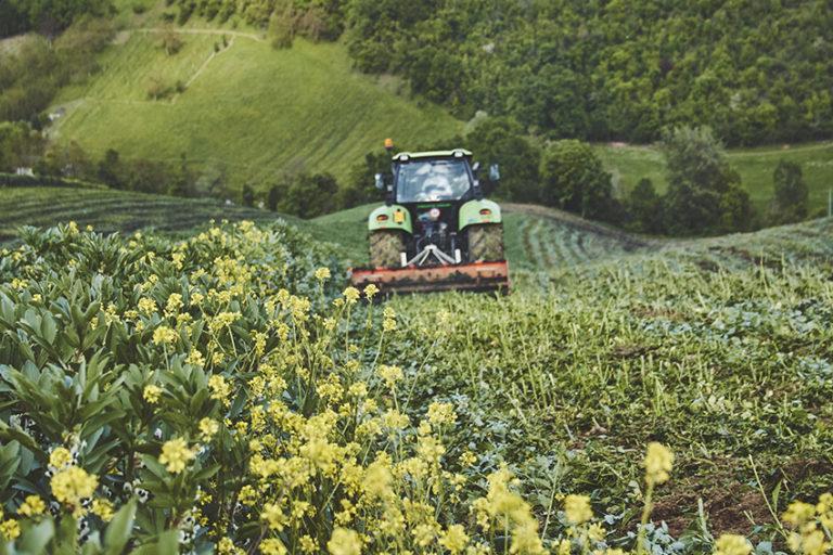 Trattore su campo verde con fiori gialli